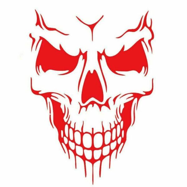 50*57CM PUNISHER Skull BLOOD Vinyl Car Decals Stickers Motorcycles Decoration Black/White/Red D-422 Car accessories